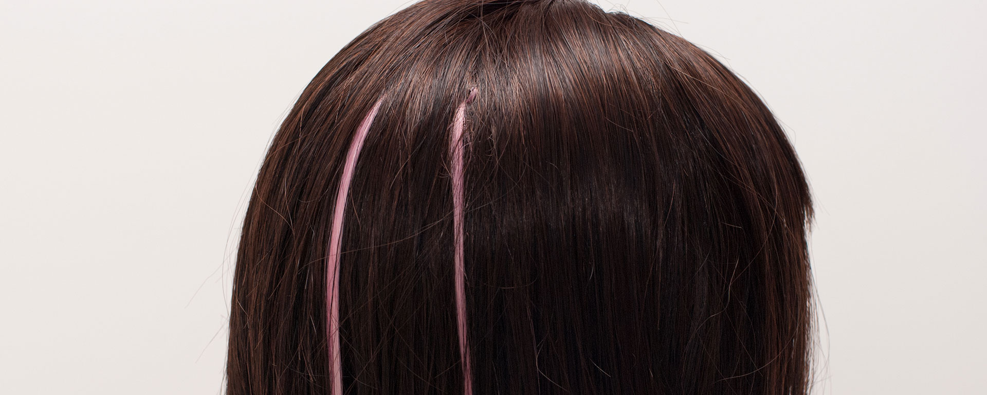 wig with highlights
