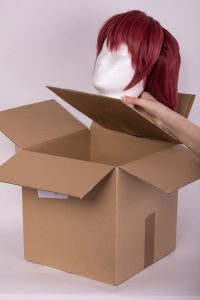 put the wig head in the box